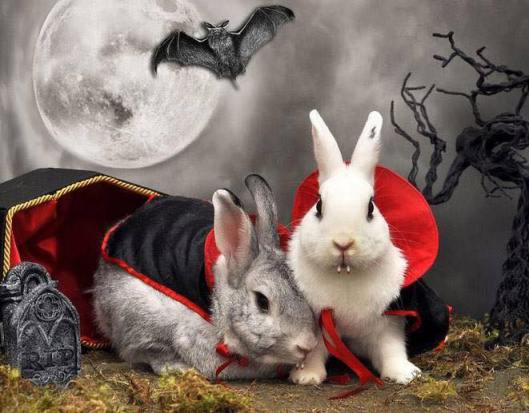 VampireEasterBunnies